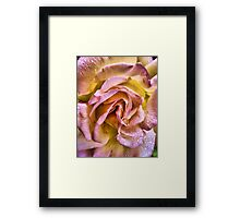 le vie en rose Framed Print