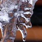 ICE Crone by tkrosevear