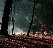 A walk on the morning of creation ... by BettinaSchwarz