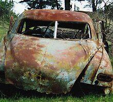 Rust Bucket by mantellpics