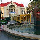 Saigon Opera House by Daryl Davis