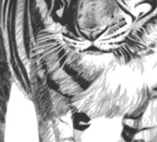 Bengal Tiger Illustration Sticker