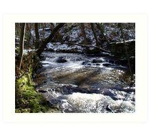 Cold cold river Art Print