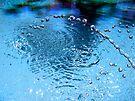 Hydro-Macro 1 by Tania  Donald