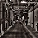 A long walk by Jason Howell