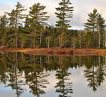 Autumn Reflector by Kathleen   Sartoris