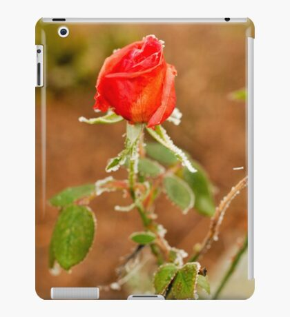 The Froze Rose iPad Case/Skin