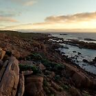 Cape Leeuwin Lighthouse by Levi Buzolic