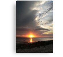 Heron Sunset Canvas Print