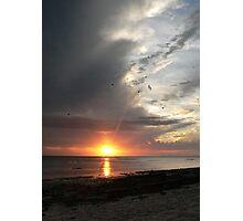 Heron Sunset Photographic Print