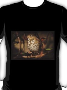 Hermit Thrush Perched On A Felled Tree T-Shirt