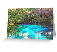 Ginnie Springs Toon Greeting Card