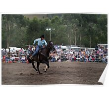 Picton Rodeo BR5 Poster