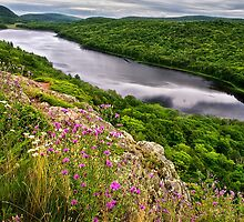 Lake of the Clouds by Kathy Weaver
