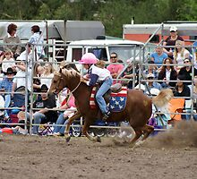 Picton Rodeo BR7 by Sharon Robertson