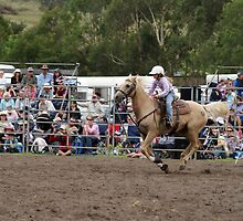 Picton Rodeo BR9 by Sharon Robertson