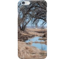 Sage River iPhone Case/Skin