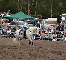 Picton Rodeo BR11 by Sharon Robertson