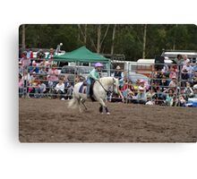 Picton Rodeo BR11 Canvas Print