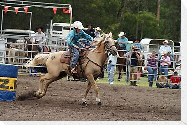 Picton Rodeo BR13 by Sharon Robertson