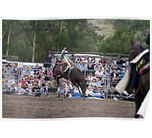 Picton Rodeo BRONC1 Poster