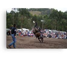Picton Rodeo BRONC3 Canvas Print