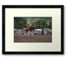 Picton Rodeo BRONC4 Framed Print