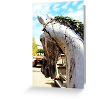 Antique Carousel Horse Greeting Card