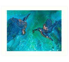 Kingfishers Making a Splash Art Print