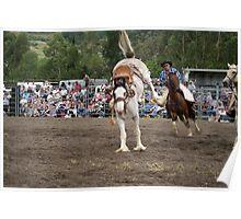 Picton Rodeo BRONC5 Poster