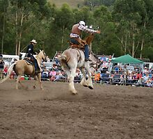 Picton Rodeo BRONC7 by Sharon Robertson