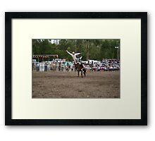 Picton Rodeo BRONC8 Framed Print
