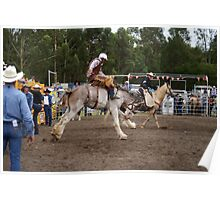 Picton Rodeo BRONC9 Poster