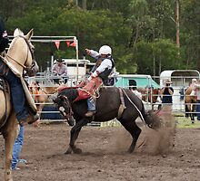 Picton Rodeo BRONC10 by Sharon Robertson