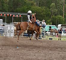 Picton Rodeo BRONC11 by Sharon Robertson