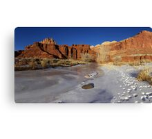 Frozen Desert Canvas Print