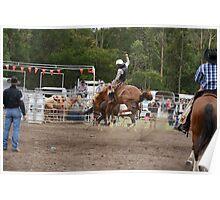 Picton Rodeo BRONC14 Poster