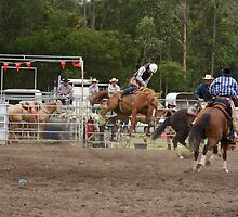 Picton Rodeo BRONC13 by Sharon Robertson