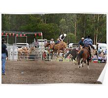 Picton Rodeo BRONC13 Poster