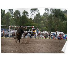 Picton Rodeo BULL1 Poster