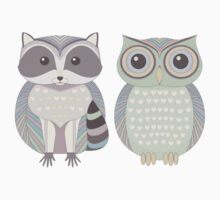 Raccoon & Cool Owl Kids Clothes