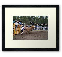 Picton Rodeo BULL4 Framed Print