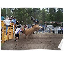 Picton Rodeo BULL4 Poster