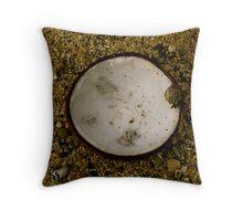 Fijian Coconut Throw Pillow