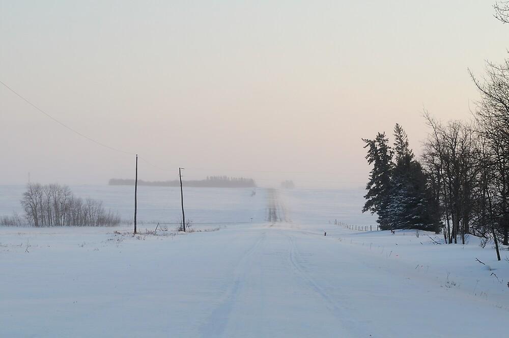 Snowy Country Roads by Geoffrey