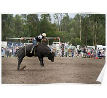 Picton Rodeo BULL10 Poster
