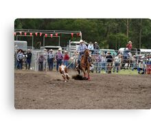 Picton Rodeo ROPE1 Canvas Print