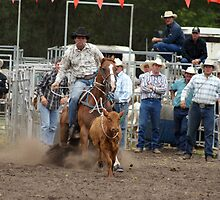 Picton Rodeo ROPE4 by Sharon Robertson