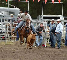Picton Rodeo ROPE5 by Sharon Robertson