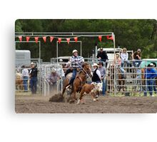 Picton Rodeo ROPE7 Canvas Print